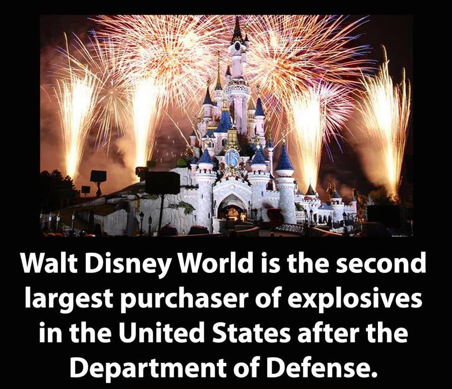 The reason for this? There are firework shows nightly at 2 Disney parks, all year round. http://t.co/Y0Valu60F1