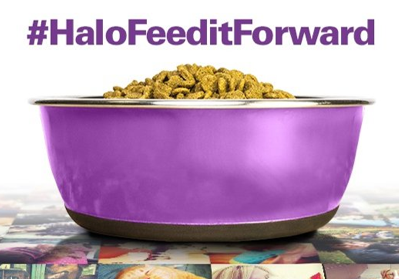 Share a #pet pic using #HaloFeedItForward & a meal will get #donated to a #shelterpet on your behalf! #SocialGood @QQ http://t.co/1F102hVuZD