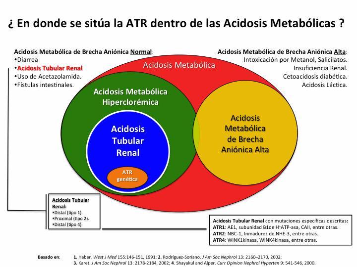 En dónde se sitúa la acidosis tubular renal dentro de las acidosis metabólicas? #Nephpearls #Nefrología #Nephrology http://t.co/O9lqwZ2ttA