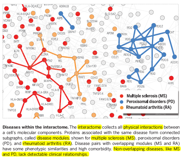 Barabasi's Disease Network: Interactome Update SCIENCE  http://t.co/3tkrsrFPxf #PM101 #genomics #asthma #celiac http://t.co/Rvow5vDlm1