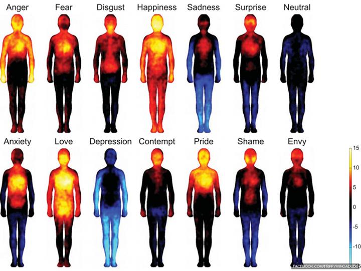 Body maps showing where we feel various emotions: http://t.co/hYj9waP6Pj