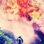 Por mar y tierra, los Bomberos de Chiloé combaten los incendios forestales. GALERÍA → http://t.co/2LjiUEM3E7 http://t.co/LaFwKqZwsx