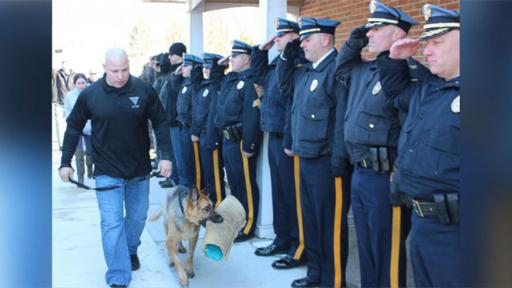 Retired NJ Police Dog Given Touching Farewell http://t.co/nzg4TGM4RU #NationalNews http://t.co/hzMjlyBuPQ