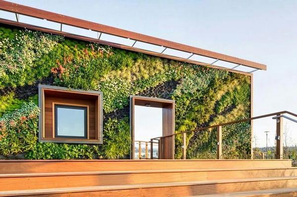 Kale muur op uw #dakterras? Tip: met meer groen verhoogt u #dakwaarde @binnenhuisarchi @blancoarchitect @vertiplant http://t.co/jdXmejLYH3