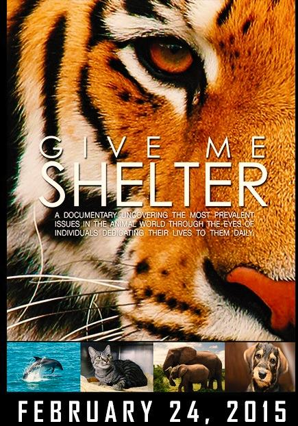 Excited to see @Katie_Cleary's #doc @GiveMe_Shelter Premiers Today! February 24th http://t.co/H80zNd8BQd http://t.co/7WPWgSAVf5