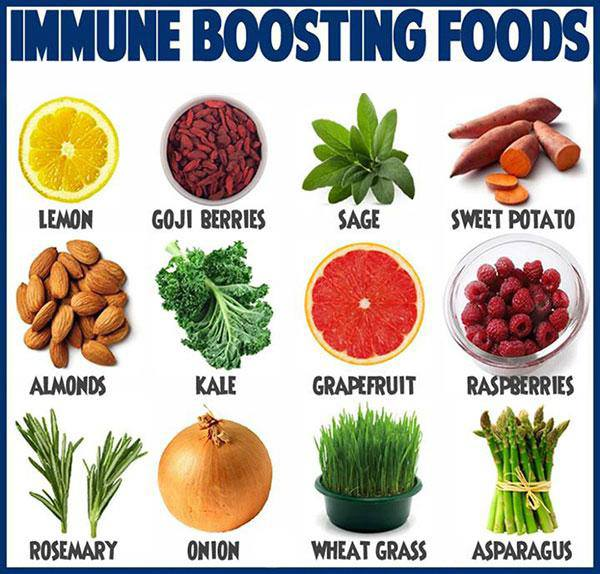 Foods That Boost Immune System Health Tips Scoopnest Com
