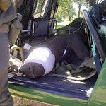 RT @SavingSurvivors: Another motherless baby choppered in Black rhino calf #savingthesurvivors .@rickygervais  .@DaleSteyn62 @BIGPICAllas h…