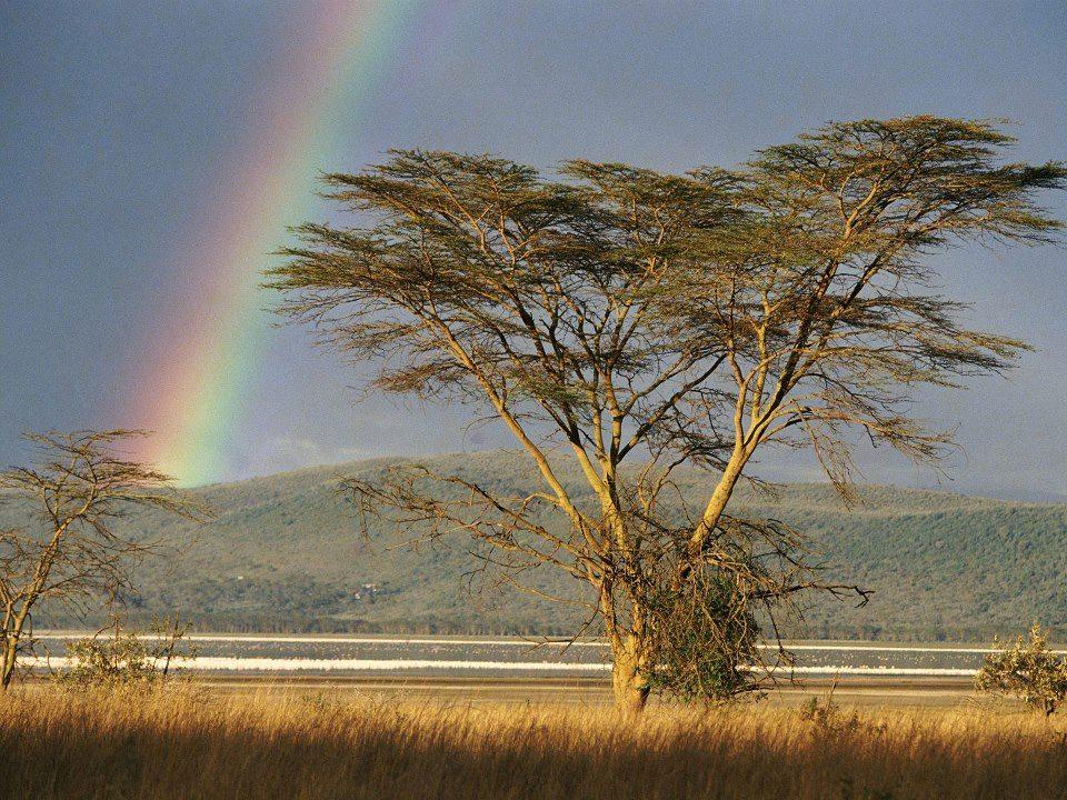 #KenyaIn5Words..Stunning,Beautiful,Breathtaking,Awesome,Magical. http://t.co/T2HQeuHdwU