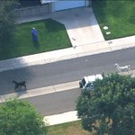 LLAMA WATCH: The chase is still on! Llamas on the loose in Phoenix. WATCH LIVE: http://t.co/wsQoRGGcfI #abc15 http://t.co/lgtl0QnXI3