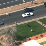 OKAY…we will offer a FREE #ABC15 bumper sticker AND mug for ANYONE who catches these llamas! http://t.co/l2xBUTzLVD