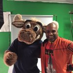 Cool photo shoot today for @SeattleGoodwill. Ran into @Mariners Moose. Nice thank you cookies too @DianasDelights http://t.co/LapX4hDY9o