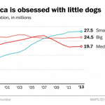 How little tiny dogs won America's heart and took over the country http://t.co/rbMxHlxETI http://t.co/6M480JR4tn