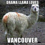 YES @wsdot_sw Were prepared for #llamadrama RT @Col_cops: Llamas on the loose on NE 172nd Ave near 29th St http://t.co/n1sITBnCHA