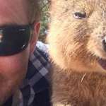 #QuokkaSelfie: Why people are taking selfies with this fuzzy Aussie animal http://t.co/JeFZtTjO5u http://t.co/GdmWpo3Svz