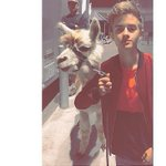 jack, I dont think you tamed that llama well enough http://t.co/BymtRL2bfF