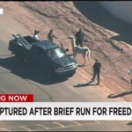 Two #llamas went on the lam in Arizona, and online spectators joined the chase: http://t.co/DvBJNLuGgR #llamadrama http://t.co/CkMZQBLnVo