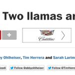 Relax guys, Washington Post has 5 reporters on the Llama story http://t.co/vJn2bP5Vtn