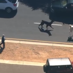 These llamas captured the hearts of America by leading us on the greatest chase of all time http://t.co/PRdIDlNHM3 http://t.co/nLisLMulvr
