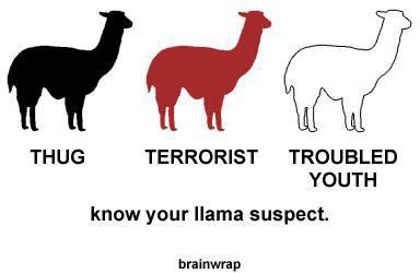 "LOL bye!!!! ""@TerrillCharming: RT @FoxNews: Quick lesson. Increase your awareness. #LlamaWatch  http://t.co/HR2dp6Hmlr"""