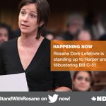 .@RosaneDL is fighting for our rights and freedoms right now. Join her. #StandWithRosane #NDP #cdnpoli #C51 http://t.co/ifj82DBbR9
