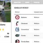 "The sports world went crazy for ""Llamas on the Loose"" in Arizona #LlamaWatch http://t.co/cUhqj2ozmL http://t.co/IuFlJ89raa"