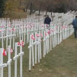 Absolutely striking-Field of Crosses on Memorial Dr, over 3k crosses for Calgarians who paid ult. sacrifice #yyc http://t.co/1Z3WDSIp5L