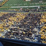 RT @SethBoster: I was skeptical of the whole tiger stripe plan. Hat tip, #Mizzou fans. http://t.co/qPtRkObDfL