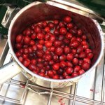 RT @CiderFusion: Fresh sauteed cranberries for the win! #cider #FTW #jcmakeityours #applecidermakeityours #JerseyCity #OctoberPHest http://t.co/pqU7HG7E0W