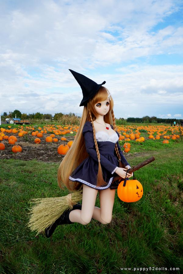 Have a Mirai Halloween! Witch Mirai #smartdoll goes to pumpkin patch to practice flying! http://t.co/BrCixYA7ct http://t.co/6dwXBYxtSn