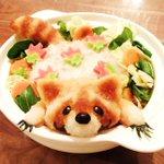 RT @bar_nyan: (;・∞・)<た…助けてくれバニー…出れなくなっちまった #タイバニキッチン 小さいけどちゃーんとトレードマークの髭があるんだよぉ//// あと楓ちゃんの生麩も…♡ http://t.co/JtQVGUBZOF