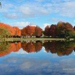 Autumn colors at Trout Lake #Vancouver #explorebc #landscape #nature #photography @TroutLakeCC @VancityBuzz http://t.co/8g9PBdWkhq