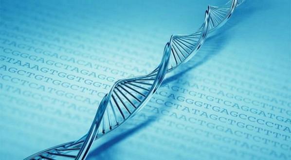 Harvard cracks DNA storage, crams 700 terabytes of data into one gram http://t.co/m7f8SwLW4S via @extremetech http://t.co/NotGEhMKRZ