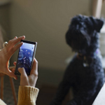 Who do you like to take photos of the most? :D #LumiaLove http://t.co/KVLCNPssJK