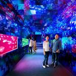 RT @fashionpressnet: 東京・すみだ水族館にきらめくクラゲのトンネルが!期間限定の幻想的な新展示登場 http://t.co/fjjFxyXGt3 http://t.co/tAQR3bas6O