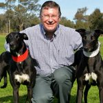 Denis Napthine #ministerofCRUELTY How many greyhounds killed in Victoria this year Napthine? http://t.co/cBM1Nalesu