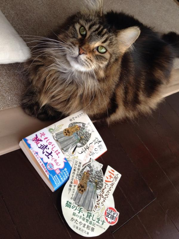 【本日発売】「猫の手、貸します 猫の手屋繁盛記(集英社文庫)」ある事情で猫の姿になってしまった武士が人の姿に戻るべく奮闘する…時代小説です。よろしくお願いしますฅ ̳͒•ˑ̫• ̳͒ฅ http://t.co/whTeWVeULn http://t.co/5mXmPzWHRH