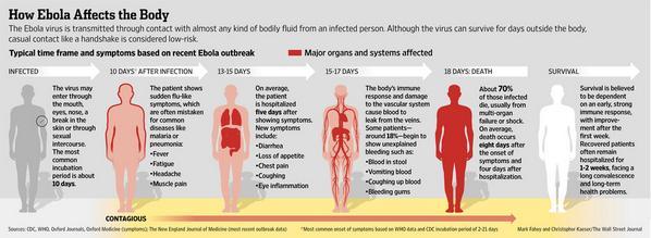 How Ebola affects the human body: http://t.co/NQCZyIzvVI http://t.co/RJmSX4Jt35
