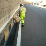 @twitfromkorea @seongnamcity @Jaemyung_Lee 안녕하세요.분당구도시미관과입니다. 오늘 분당-수서간 지하도로 쓰레기 수거했습니다. 깨끗한 도로환경을 위하여 철저히 청소하도록하겠습니다 http://t.co/pnsCaBNiBR
