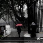 RT @Isolated_Pixel: #Photography #lka #SriLanka http://t.co/2JTR15itKZ
