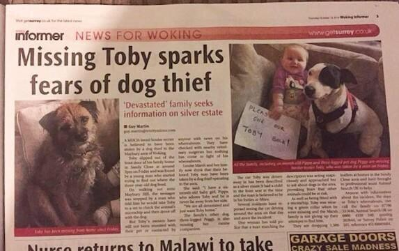 #findtobyterrier Help Find @FindTobyTerrier he's been dognapped!!!!! #bringhimhome http://t.co/we2YrLiY3H