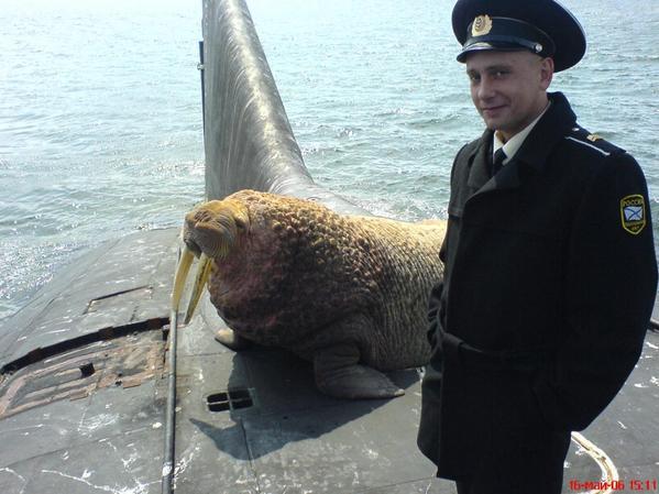 ロシアの原潜に珍しいお客さんが来たらしい http://t.co/WvhqrEG0CG