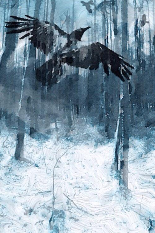 """Raven sees & knows what is beyond  magic mist of earth. CB """"@JohnFEdwards Raven's Wood #Bird #Forest #Painting #Art"""" http://t.co/P1BVEwL0rx"""