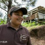RT @LaPerlaPR: José Esteban López: agricultor, empresario, declamador y estudiante de sexto grado | http://t.co/Tg1mpiKFhY http://t.co/JbQZSzxG8g