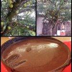 "RT @3minutosinforma: Árbol de ""Morro"", produce la famosa jicara donde se sirve el posol #Chiapas @EnTuxtla2 @tuxrecomienda @macfoto2 http://t.co/ZlcwazjtJO"