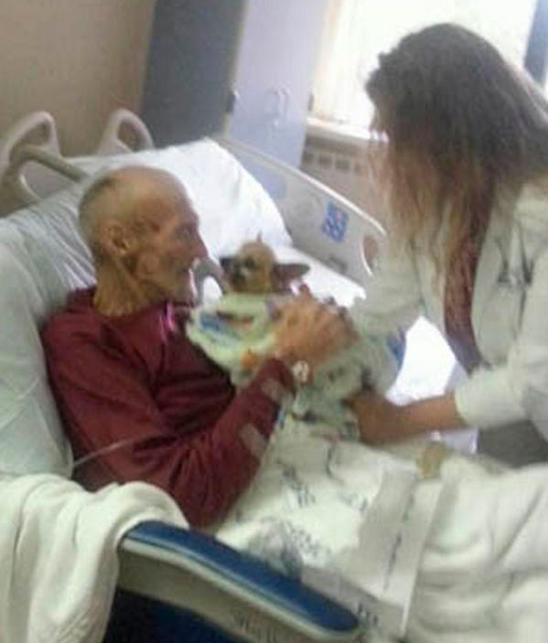 Hospital de Kentucky,permite entrar a un perro para visitar a enfermo terminal http://t.co/utwFVmwd3f http://t.co/QjKjJ2kQWw (@Schnauzicom)