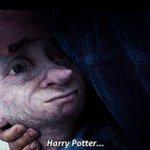 """""""Cest un endroit magnifique pour être avec des amis. Dobby est heureux dêtre avec son ami... Harry Potter. """" http://t.co/o2zfoyRfFE"""