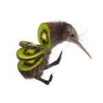 13 strange animals photoshopped as fruits and vegetables http://t.co/I5bP6MmYzn http://t.co/idmQmyvPAw