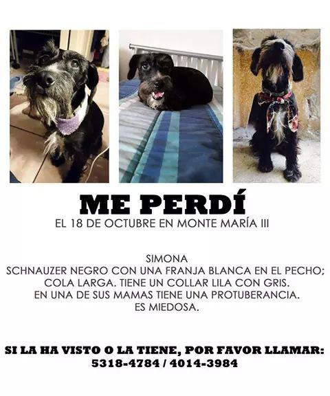 COMPARTAN POR FAVOR. http://t.co/lf7Z7xCQzu