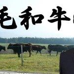 RT @ZeroE13A1: 民主党の海江田代表は、NHKの取材に対し、辞任は当然だ、このあと、一連のいきさつについて、 どのような説明をするのか注目したい。 小渕氏はきちんと説明責任を果たさなければならない。 4200億円安愚楽牧場被害者に説明しろ。 #nhk http://t.co/6cPIFrpJeF