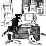 My favourite internet cartoon... On the internet nobody knows youre a dog. Peter Steiner 1993. #TelstraSummit http://t.co/7WEPaOMFlE